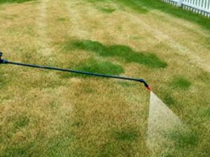 Postrek proti burine v trávniku – Nie je herbicíd ako herbicíd